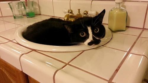 1. Having a clogged sink can be a real bummer, but there's no reason to panic.
