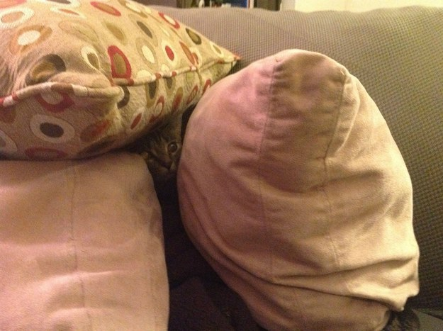 """4. """"Um, OBVIOUSLY pillow forts are the only forts worth building."""""""
