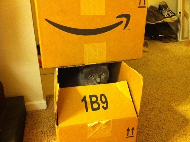 """15. """"Amazon always delivers my favorite boxes in a timely fashion."""""""