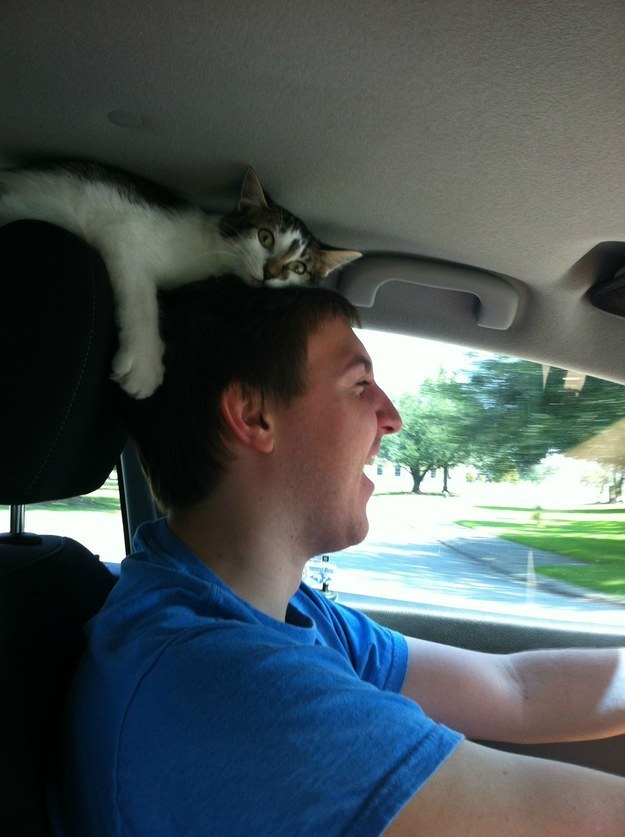 """10. """"Remember, check your blind spot, geez!!!"""""""