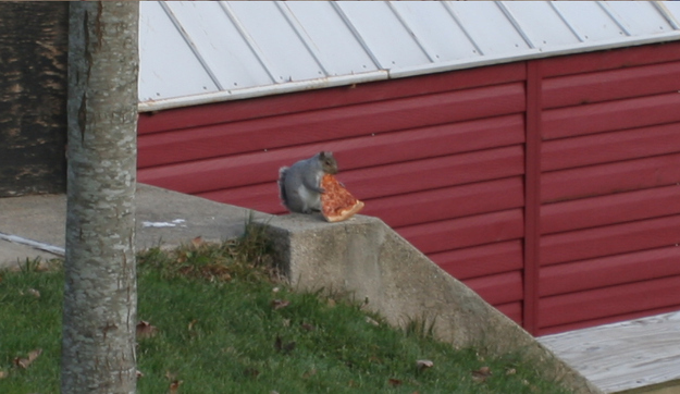 """27. """"Paid $2 for this pizza, and I intend to sit here until I have finished what I paid for."""""""