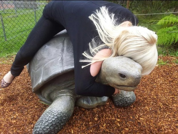 9. Is this a real turtle?!