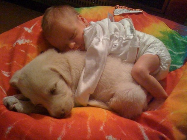 23. These two snuggle bunnies.