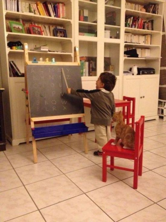 14. This boy schooling his best friend in the ABCs.