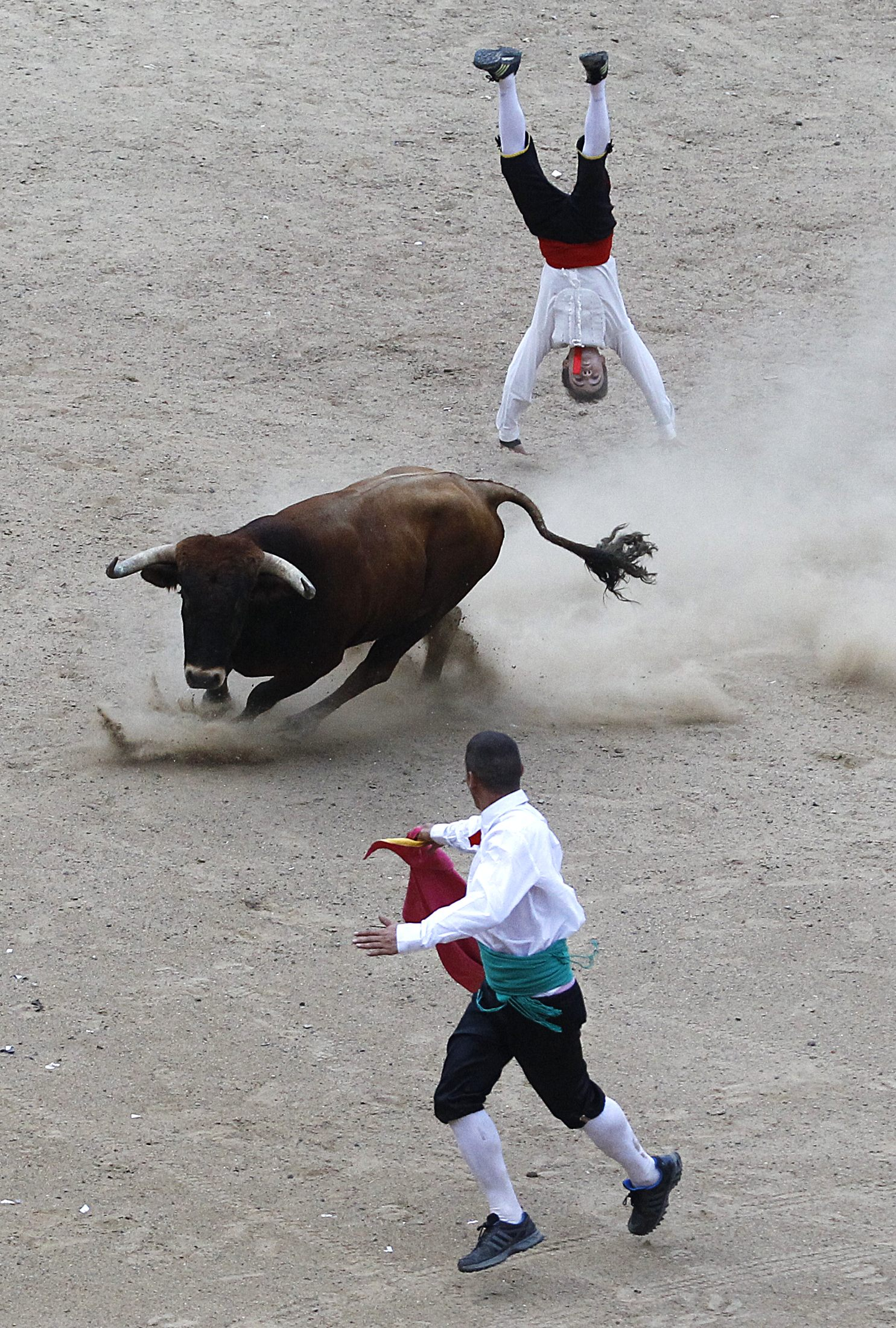 A Spanish recortadore jumps over a bull during a show in Cali