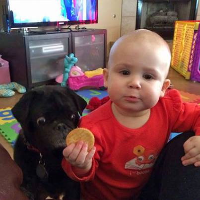 kid and a dog